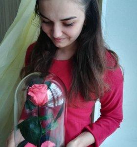Роза в колбе!