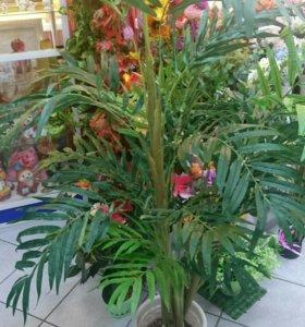 Деревья и цветы искусственные