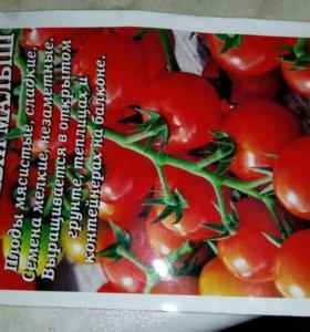 Рассада томатов чери