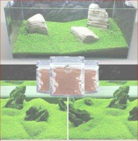 Газон аквариумный