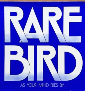 Rare Bird As Your Mind Flies By 1970 Germany