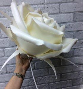 Ночник . Лампа Роза