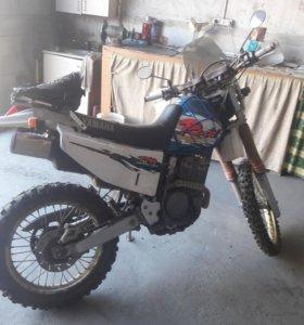YAMAHA TTR RAID 250
