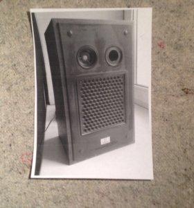 Колонки радиотехника -209