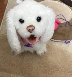 Интерактивный щенок Furreal Hasbro