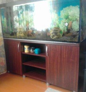 Продам аквариум 308.все новое покупали в августе
