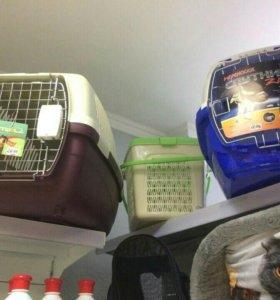 Переноски для кошек и маленьких собак цены и виды