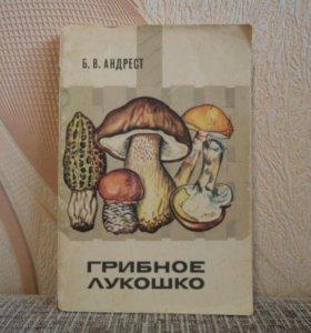 Андрест Грибное лукошко 1978 год