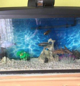 Продам аквариум на 125 л
