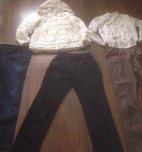 Одежда для беременных 48-50