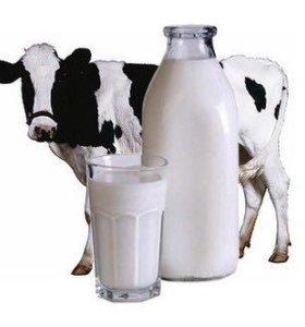 Молоко продаётся
