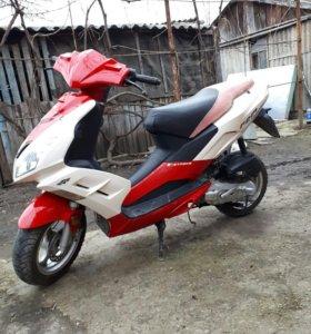 Nexus f22 2 t 50 cc