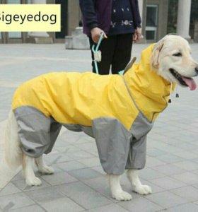 Дождевики на больших собак