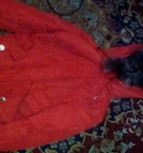 Куртка на лет 11-10