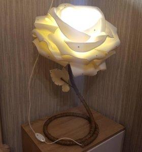 Роза ночник!❤