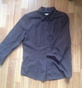 Рубашка кофта блузка