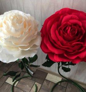 Цветы к последнему звонку