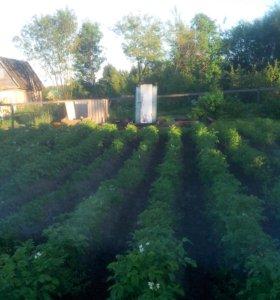 Участок, 220 сот., сельхоз (снт или днп)