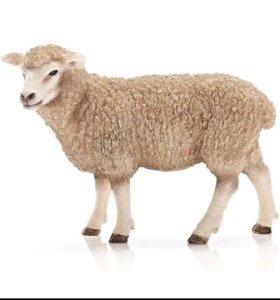 Покупаем овечью  шерсть