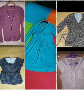 Блузка НОВАЯ (и для беременных и кормящих