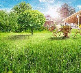 Автоматический полив. Рулонный, посевной газон.
