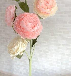 Ростовые цветы, букеты, композиции