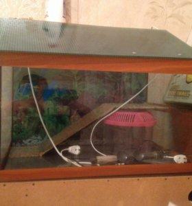 Террариум для морской черепашки