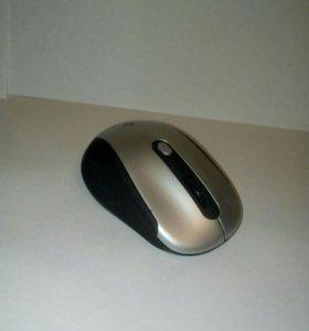 Беспроводная мышь Dexp