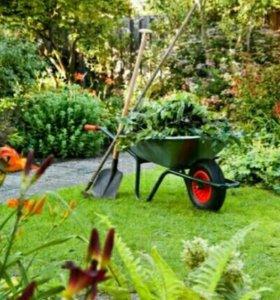 Помощ в огороде и саду
