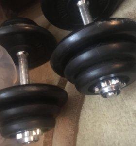 Гантели (общий вес 40кг)