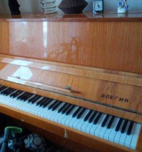 """Фортепиано """"Элегия"""""""