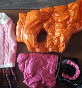 Б/у. Одежда для кошек и собак.