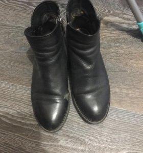 Кожаные женские ботинки демисезонные