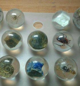 Коллекция оккаменелостей. Обмен
