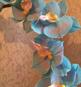 Ростовые цветы - Орхидея