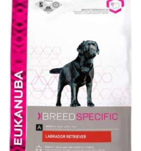 Eukanuba для крупных собак, 12кг