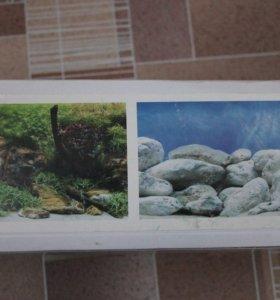 Фон на заднюю стенку аквариума