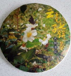 Чай прессованный из цветов Камелии шен пуэр