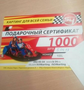 Сертификат на картинг