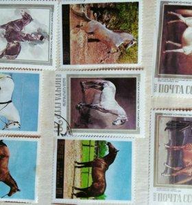 Марки лошади mongolia шуудан korea почта ссср