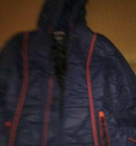 Болоневое пальто.