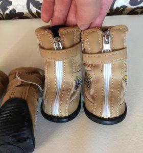 Ботиночки -ботинки для собак