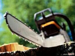 Услуги по спилу/удалению сложных/аварийных деревье