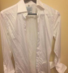 Рубашка мужская Albione