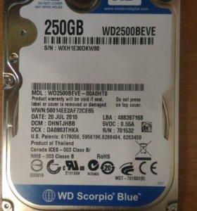 """Жесткий диск IDE 2,5"""" WD 250 GB - для ноутбука"""