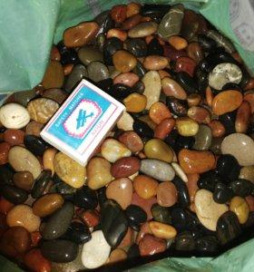 10 кг аквариумной гальки