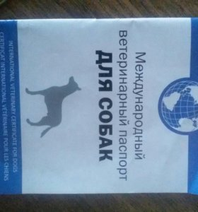 паспорт для собак