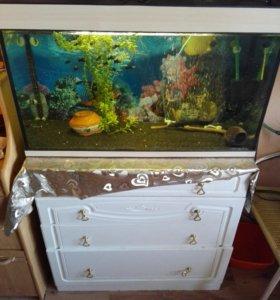 Аквариум 180 и 50 литров с оборудованием и рыбками