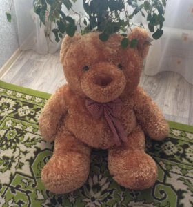 Огромный,новый медведь