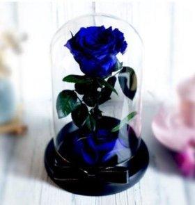 Живые розы в стекле на подарок